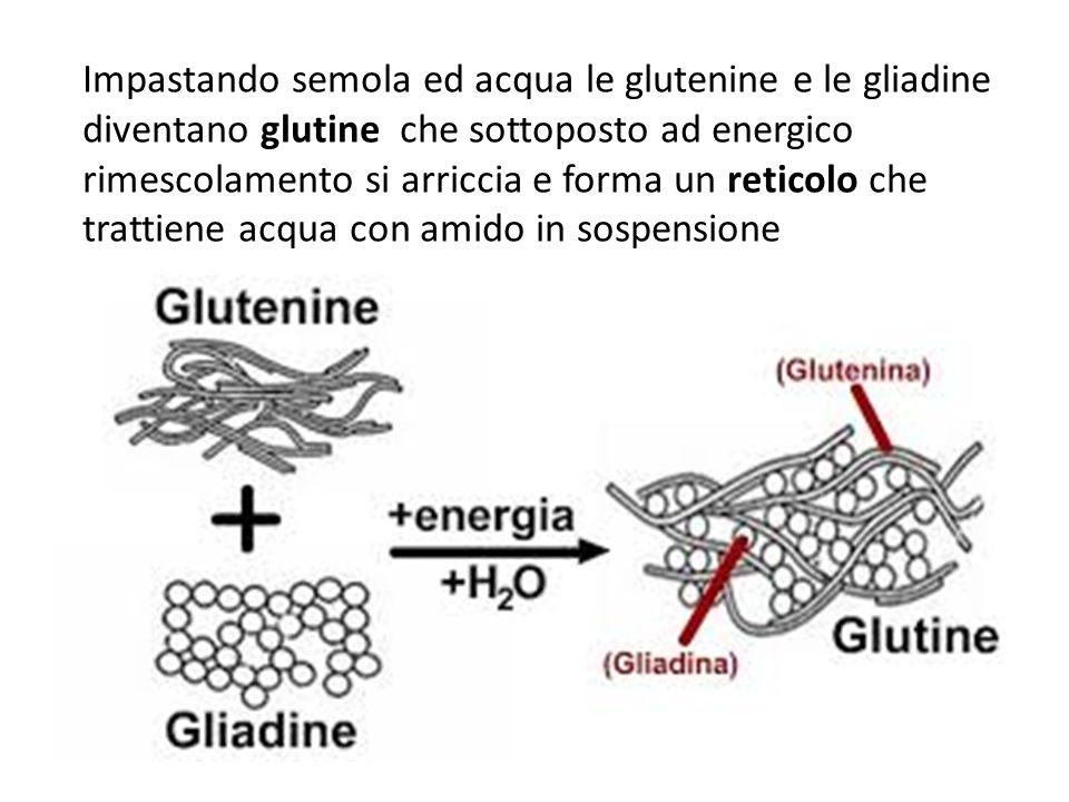 Glutine Farina