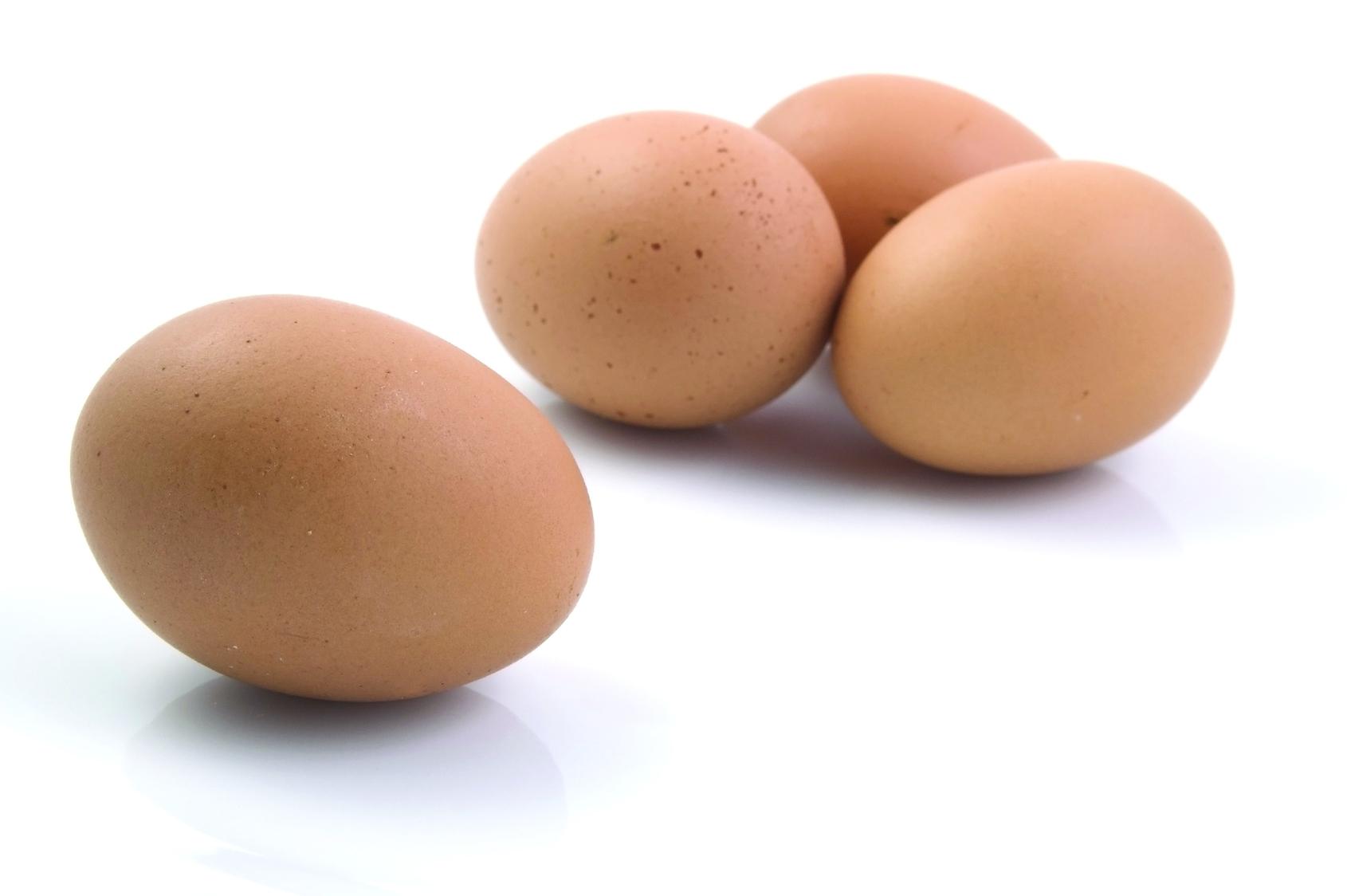 Uova fresche Pan di Spagna